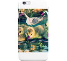 Parents close by as chick explore iPhone Case/Skin