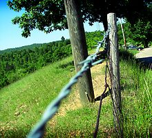 Fence by anathema