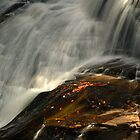 High Falls, Dupont State Park, North Carolina by fauselr