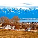 Polson Bay and the Mission Mountains from Jette Meadows by Bryan D. Spellman