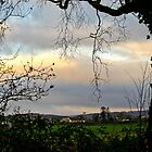 Twilight, County Wicklow by Agnes McGuinness