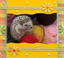 Knitting Basket by BlackSwan