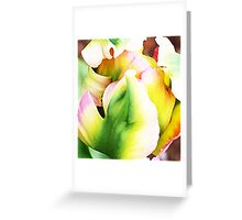 GREEN PARROT TULIP Greeting Card