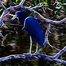 Blue Egert Fractalius by Virginia N. Fred