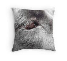 Eye of the best friend Throw Pillow
