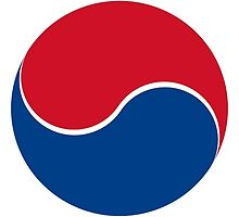 Roundel of South Korea Air Force  by abbeyz71