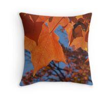 Sugar Maple Leaves with Azure Throw Pillow