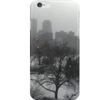 Wintry State House Window iPhone Case/Skin
