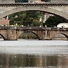 Bridges Over the Charente by Pamela Jayne Smith