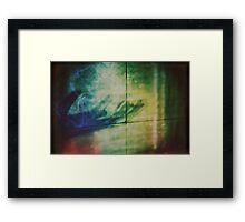 2697 Framed Print