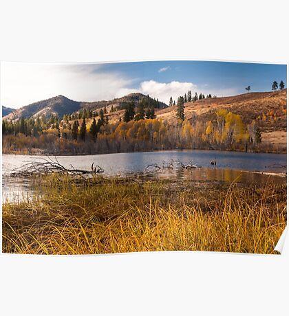 Autumn at Beaver Pond Poster
