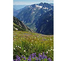 Summer Wildflowers and Mountains Photographic Print