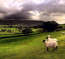 evening shower in the Dales by Dan Shalloe