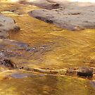 River of Gold  by Maureen Clark