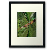 Exhilaration of Flight Framed Print