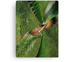 Exhilaration of Flight Canvas Print