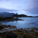 Lofoten Islands by Willy Vendeville