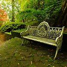 Breenhold Garden, Mt Wilson by Gabrielle  Lees