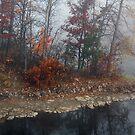 Foggy Weather by Joanne  Bradley