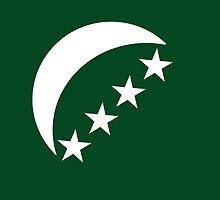 Roundel of Comoros Air Force  by abbeyz71