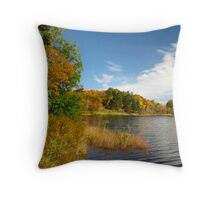 Rich Fall Colours To Dream About Throw Pillow