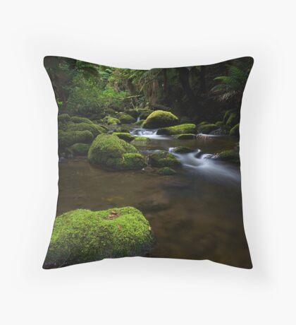 Small Fall Throw Pillow