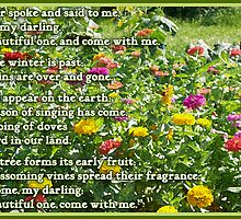 Canticle of Canticles 2:10-13 by WalnutHill