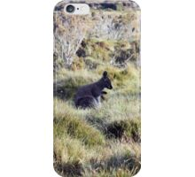 Little Wallaby iPhone Case/Skin