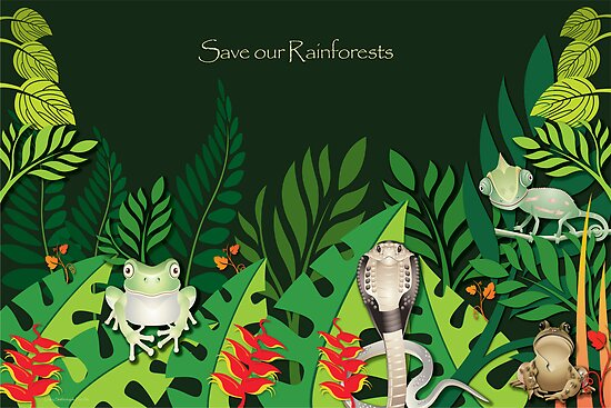 Save our Rainforests by Lesley Smitheringale