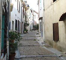 Arles - France by darrenjc