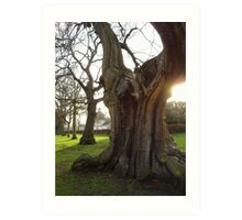 Greenwich - England Art Print