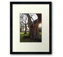 Greenwich - England Framed Print