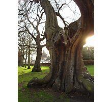 Greenwich - England Photographic Print