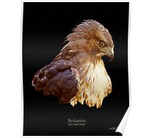 """The Guardian"" (Red-Tailed Hawk) Poster"