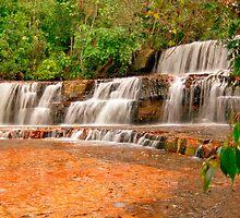 Jasper Falls, La Gran Sabana, Venezuela by Paris Lee