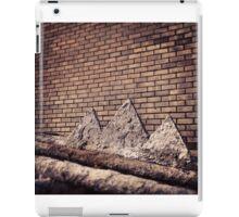 wall mountains iPad Case/Skin