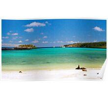 Island Beach, Galapagos Islands, Ecuador Poster