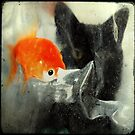 _ cat and fish _ by Louise LeGresley