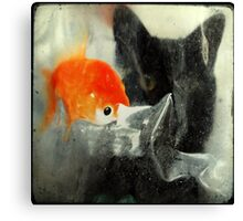 _ cat and fish _ Canvas Print