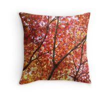 Beautiful Fall Foliage Throw Pillow