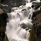 Lower Mesa Falls by Anibal