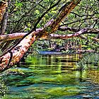 The Swimming Hole by wallarooimages