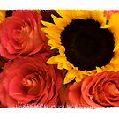 Sunflower & Roses by Kelly Pierce