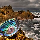Rough Paua Shell by Ken Wright