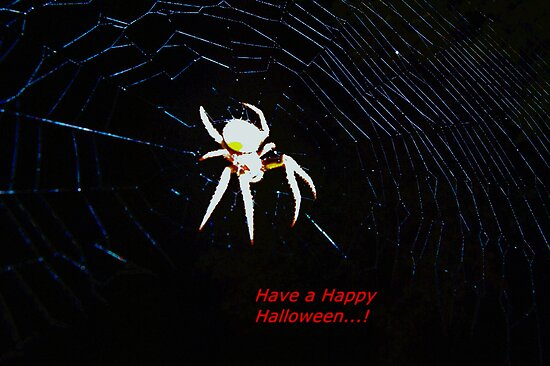 Talking Halloween spider by ♥⊱ B. Randi Bailey