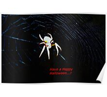 Talking Halloween spider Poster