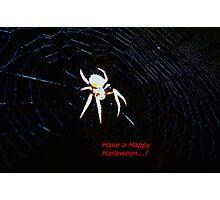 Talking Halloween spider Photographic Print