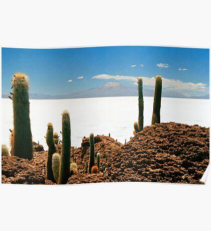 Isla de Pescadores, Salar de Uyuni, Bolivia Poster