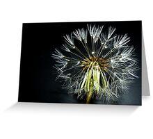The blowflower Greeting Card