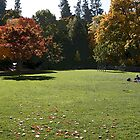 Lithia Park by pearlguy